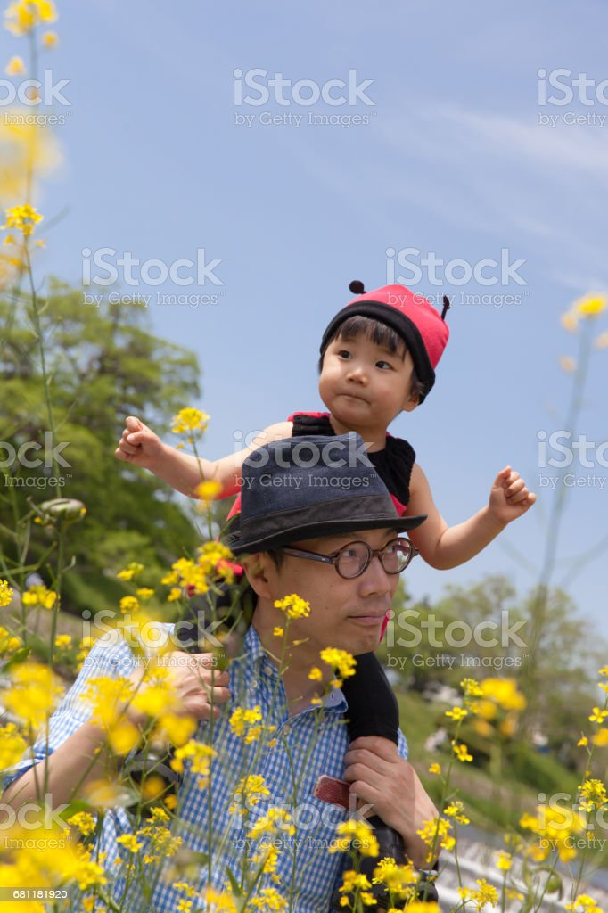 Japanese baby girl in ladybird costume piggyback on her father stock photo