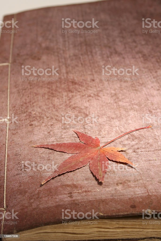 Japanese Book with Maple royalty-free stock photo