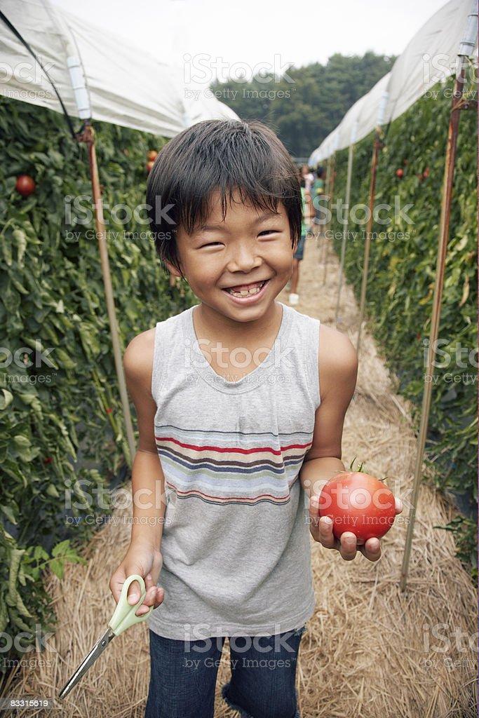Giapponese ragazzo con un pomodoro foto stock royalty-free