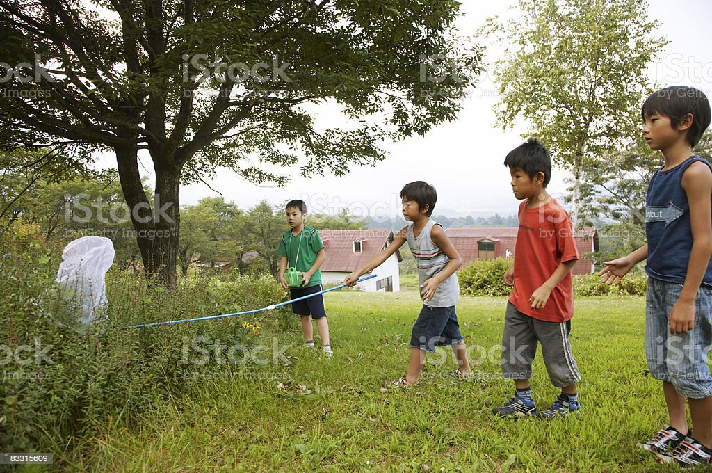 Japanese boys catching insect royalty free stockfoto