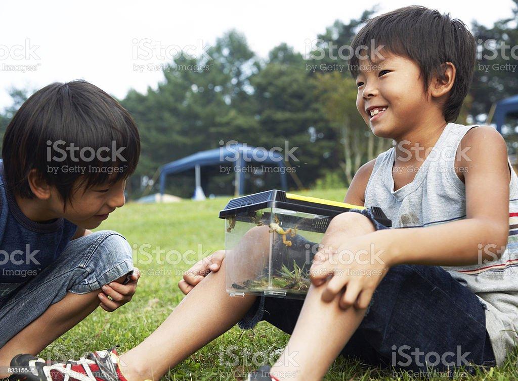 Giapponese ragazzi guardando in plastica foto stock royalty-free