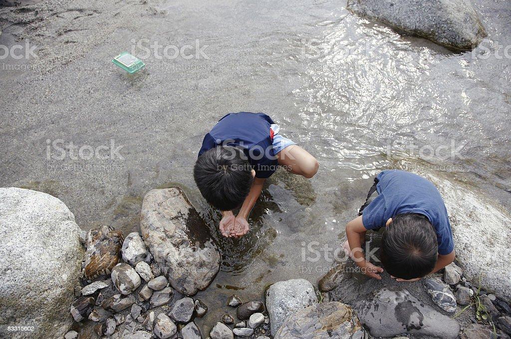 Japanese boys looking into river royaltyfri bildbanksbilder