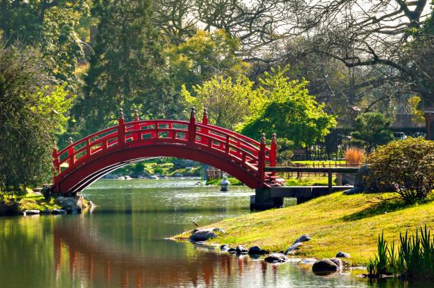 Puente japonés - foto de stock