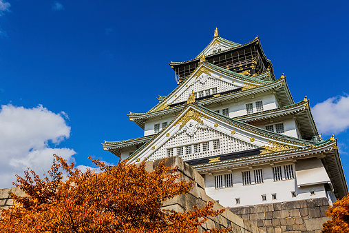 Japanese Castle with autumn leaves.