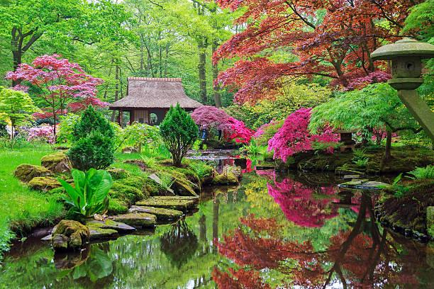 japanische farben - japanischer garten stock-fotos und bilder