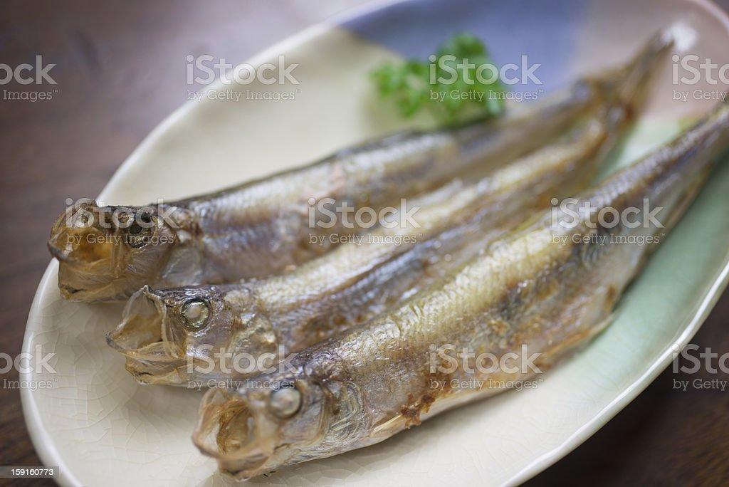 Japanese Cuisine Shishamo (ししゃも) stock photo