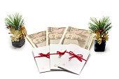 新しい年のお金のギフトを提示するための封筒