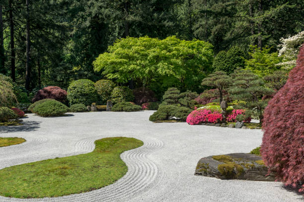 Japanese Flat Garden Moss Bushes Springtime Portland Oregon stock photo