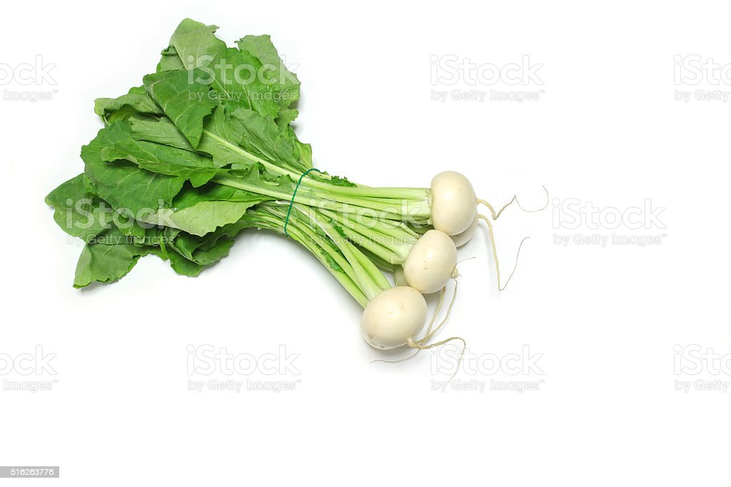 Japanese fresh turnip in the white stock photo