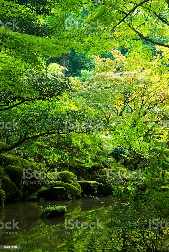 Japanese Garden and Pond royalty-free stock photo