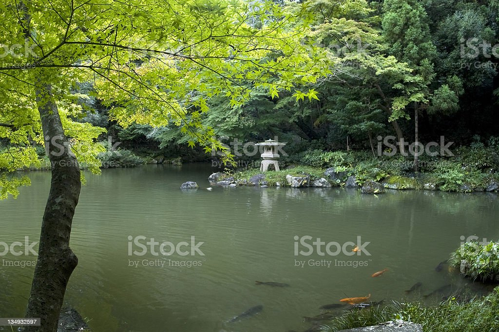 Japanese Garden and scarps on the pond. stock photo