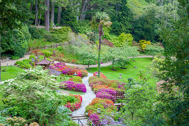 Japanese Garden at Powerscourt State stock photo
