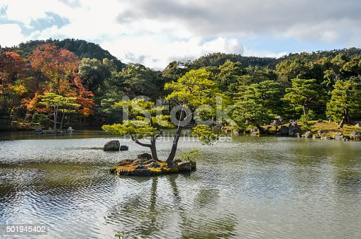 Japanese Garden - Autumn Colors