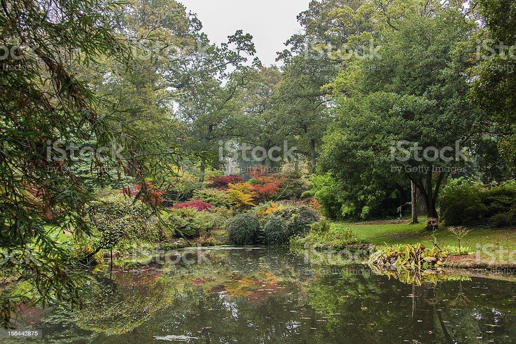 Japanese Garden Fall stock photo