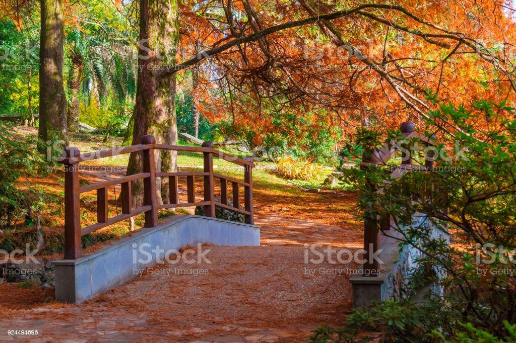 Japanese garden in Arboretum, Sochi, Russia stock photo