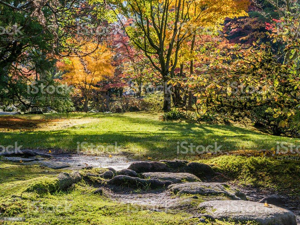 Japanese garden in Seattle stock photo