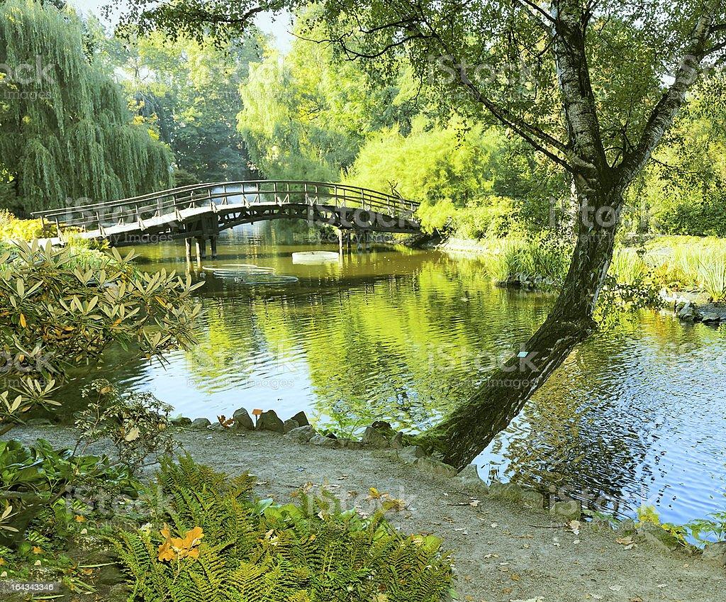 Japanese garden in the rain royalty-free stock photo