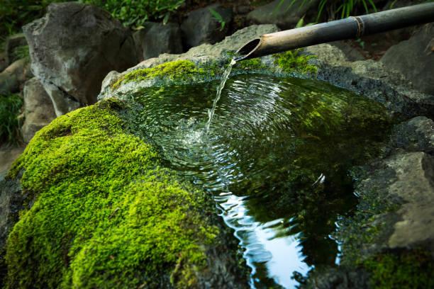 日本庭園の風景 - 仏教 ストックフォトと画像