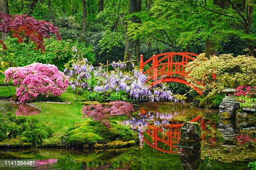 Small bridge in Japanese garden, Park Clingendael, The Hague, Netherlands