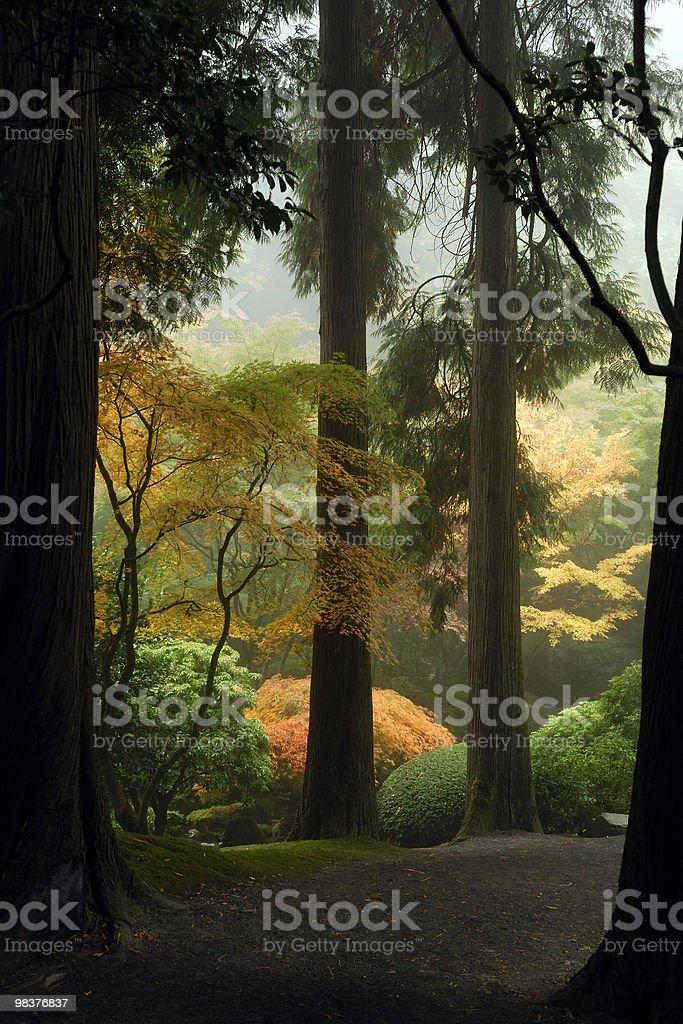 Japanese Garden Path royalty-free stock photo