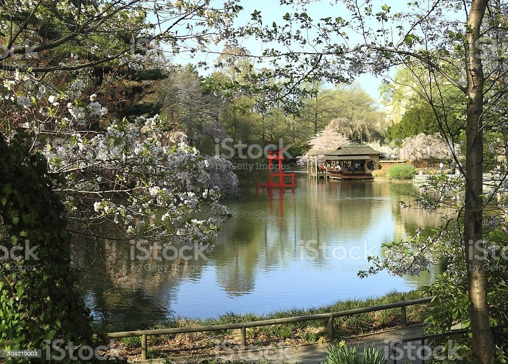 Japanese Garden Pond royalty-free stock photo