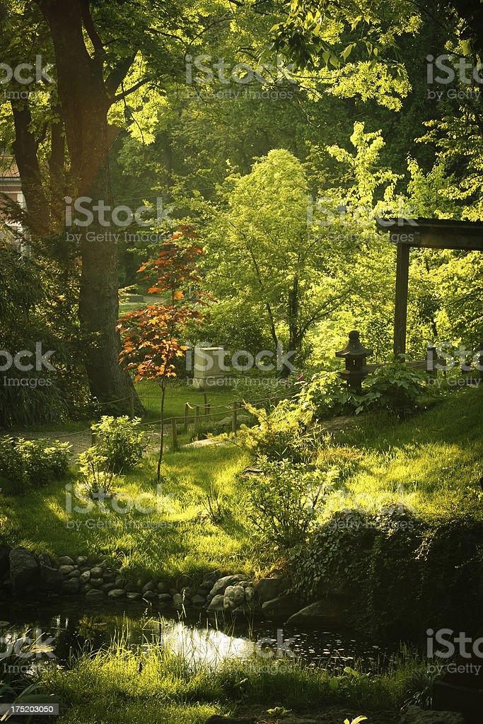 Japanese Garden Pond royalty-free stock photo