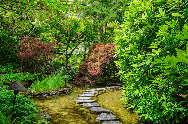 Japanese garden with stepping stones stock photo