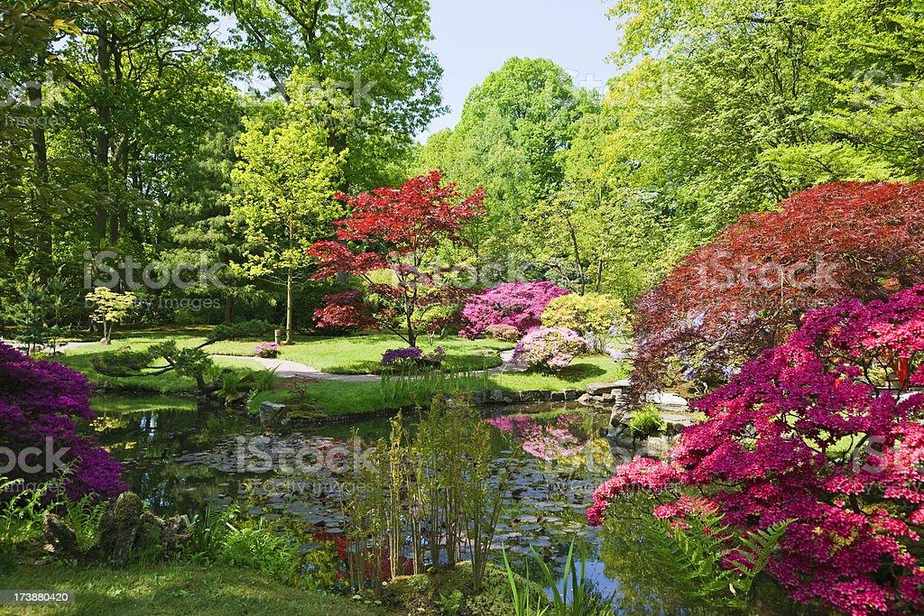 Japanese garden # 5 XXXL royalty-free stock photo