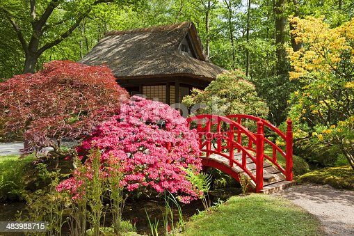 Japanese garden in springtime, please see also my other garden flowers in my lightbox: