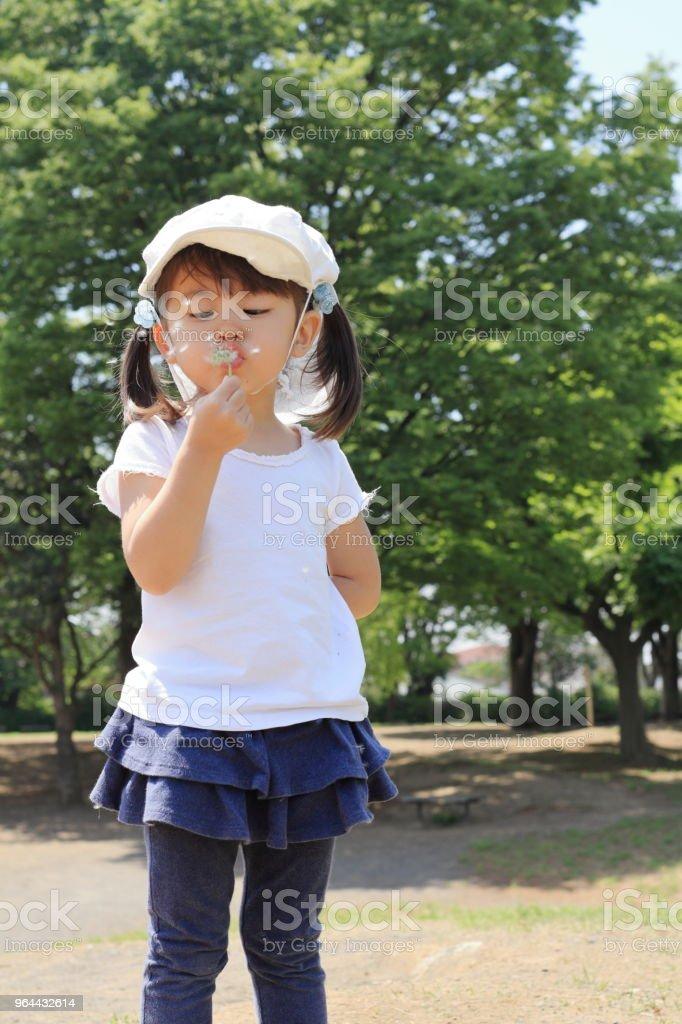 Menina japonesa sopra sementes de dente de leão, sob o céu azul (3 anos) - Foto de stock de 2-3 Anos royalty-free