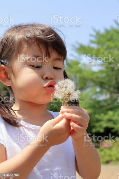 Foto de Menina Japonesa Sopra Sementes De Dente De Leão Sob O Céu Azul e mais fotos de stock de 2-3 Anos