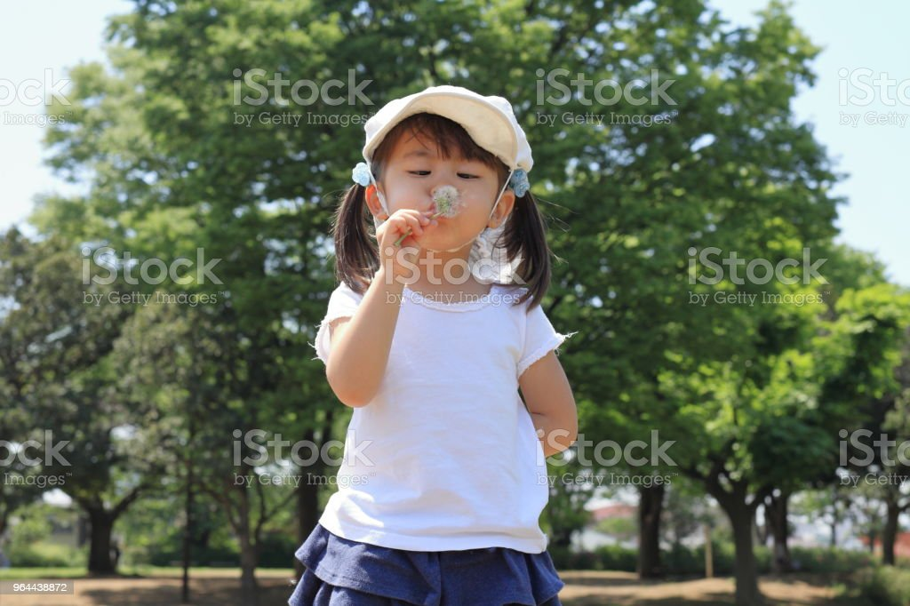 Japanese girl blowing dandelion seeds under the blue sky (3 years old) - Royalty-free 2-3 Years Stock Photo