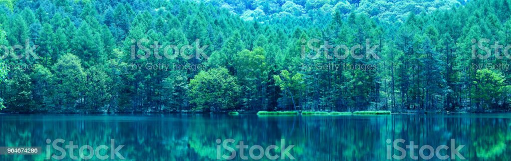 Japanese green pond royalty-free stock photo
