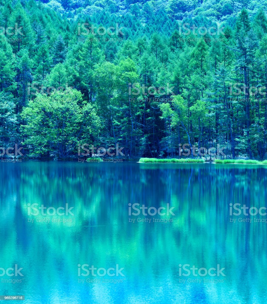 Japanese green pond royalty-free stock photo