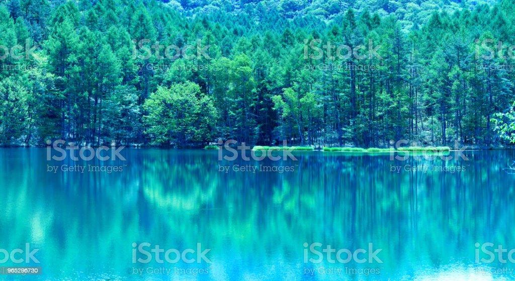 Japanese green pond zbiór zdjęć royalty-free
