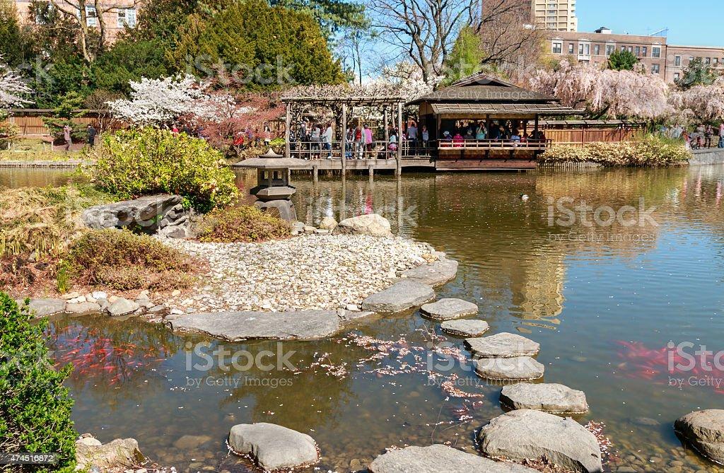 Bassin Du Jardin Japonais Hill à Brooklyn à New York – Photos et ...
