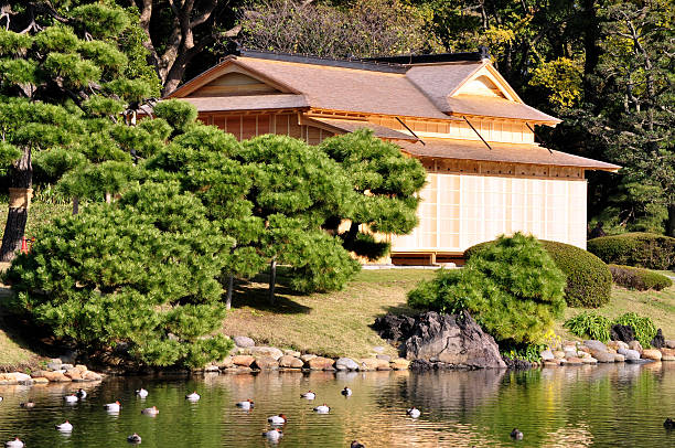 Japanese House And Duck Pond