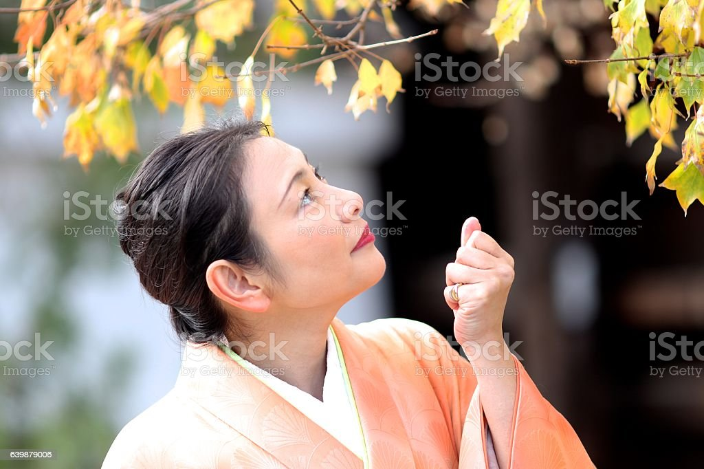 Japanese kimono lady enjoying autumn leaves  at Tofuku temple stock photo
