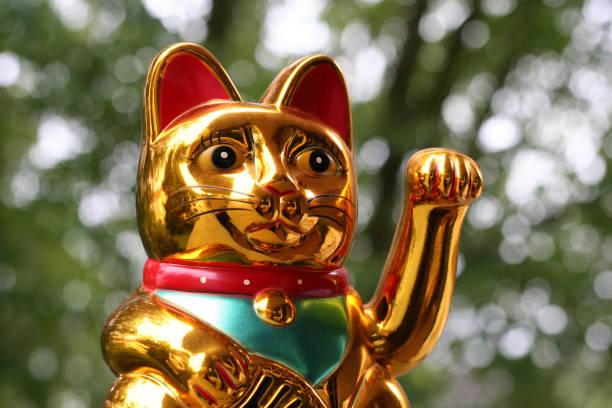 Japanese lucky cat picture id817513942?b=1&k=6&m=817513942&s=612x612&w=0&h=nd6imjcfarsjv2kviobqtdi1g11 vo6tfk2rr48035y=