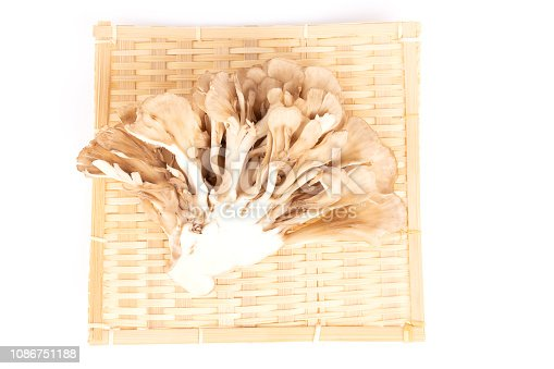 Japanese mushrooms maitake in a bamboo plate on white background. Flat-lay, top view.