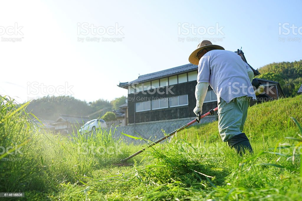 Japanese old person doing agricultural work in rural area - foto de stock