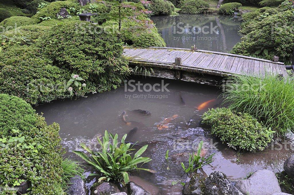Japanese Pond, Fish, and Bridge royalty-free stock photo