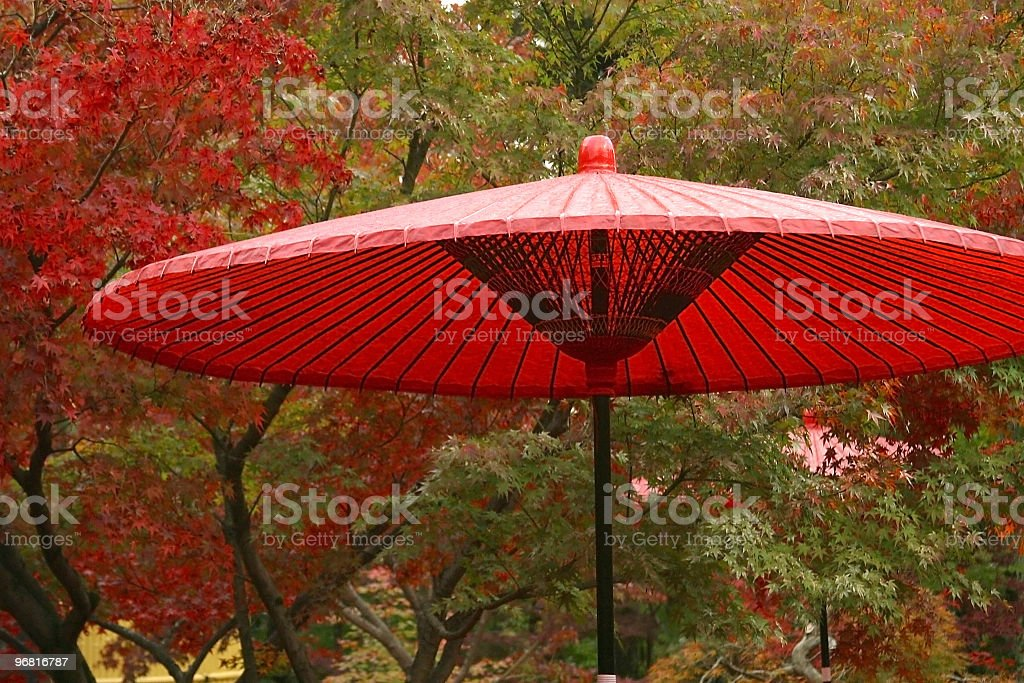 Japanese Red Umbrella in Fall Color royalty-free stock photo