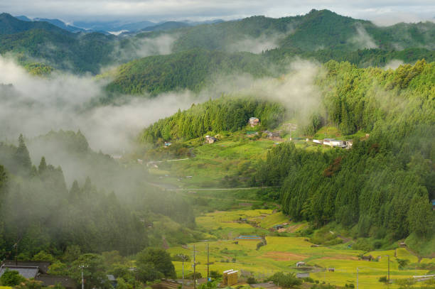 Japanese rural landscape of rice farms in high mountains stock photo