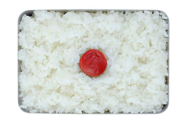 Japonés simple almuerzo ( Hinomaru Bento ) - foto de stock