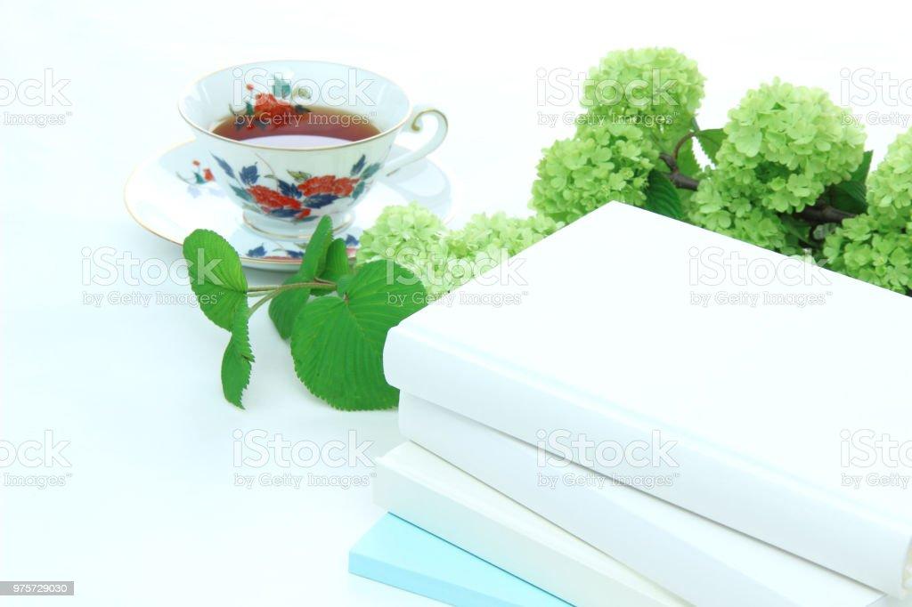 Japanischer Schneeball (Oodemari) und Buch - Lizenzfrei Arbeitszimmer Stock-Foto