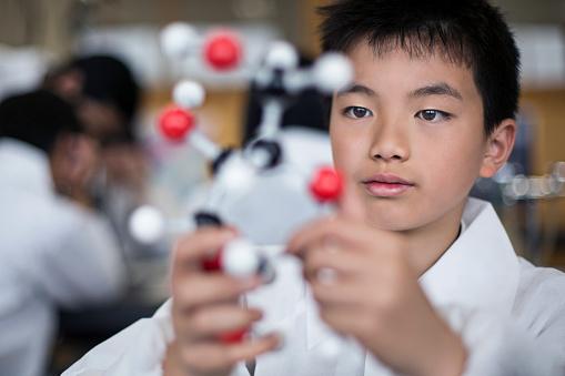 457224763 istock photo Japanese student holding a molecular model 490858342