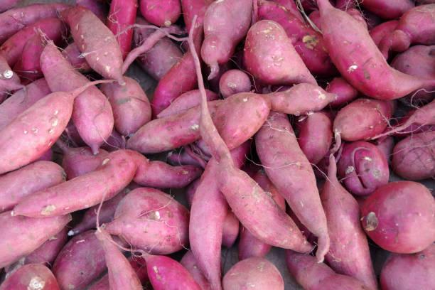 Japanese sweet potatoes stock photo