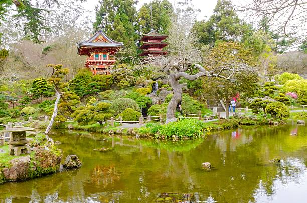 Royalty Free Japanese Tea Garden San Francisco Pictures, Images and ...