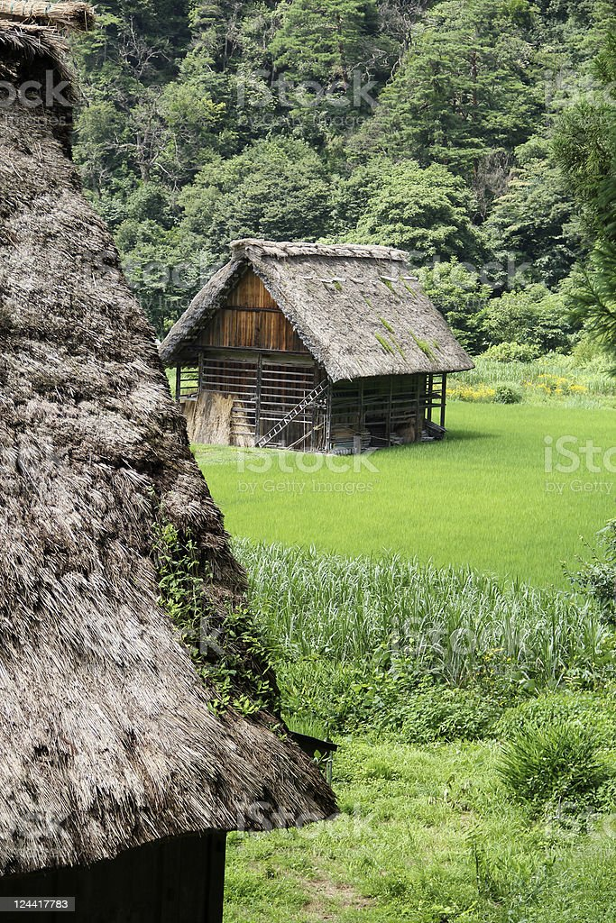 Japanese Thatched-roof Buildings Foreground Roof Background Barn stock photo